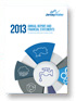 Jersey Water - Financial Statements 2013