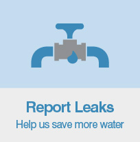 Report Leaks