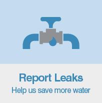 Report Leaks