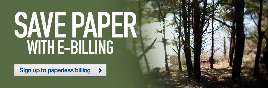 Save Paper with E-billing